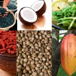 5 BEST SUPERFOODS